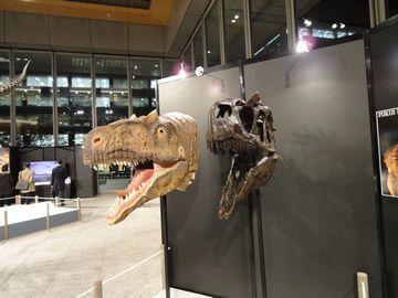 大恐竜展!