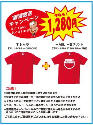 campaign_01.jpg
