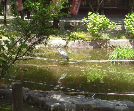 SUMIYOSHI_450.jpg