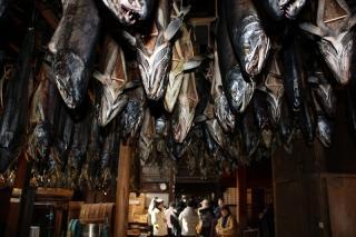 村上の塩鮭