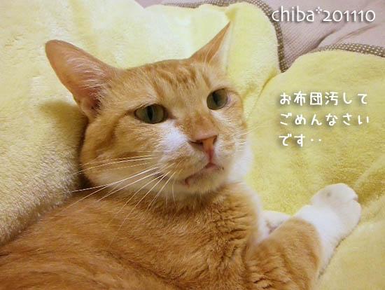 chiba11-10-129.jpg