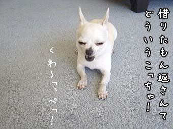 s-P1300398 copy