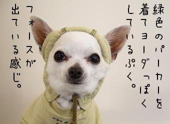 s-haikei5.jpg