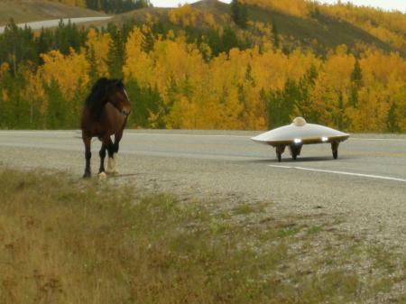 馬とソーラーカー
