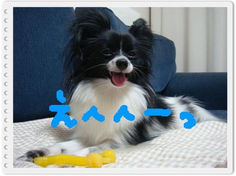 編集_DSC04633