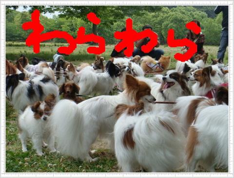 編集_DSC04688