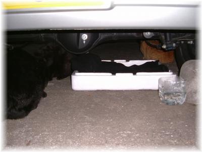 車の下の二人用寝床~