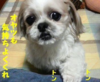 2008071419180000.jpg