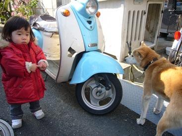 優花と犬2