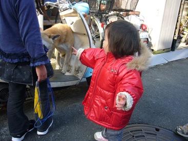 優花と犬3