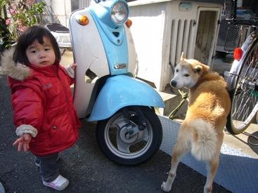 優花と犬4