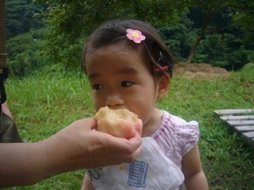 優花と桃の木4