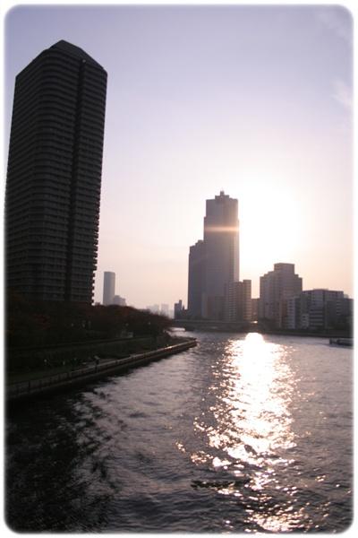 20110113_1.jpg