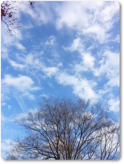 20110120_25.jpg