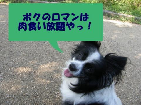 1814_20110126211959.jpg