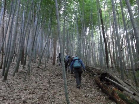 09-iwatayamatozanguchi-s.jpg