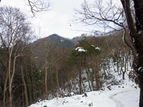 110123-takitaniyama-21.jpg