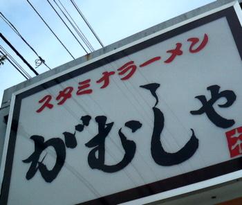 gamusya_soto.jpg