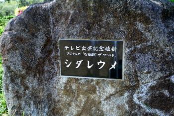 hamanasu_park_naruhodo.jpg