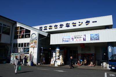hitachi_osakana1.jpg