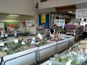 mitinoeki_sakai3.jpg