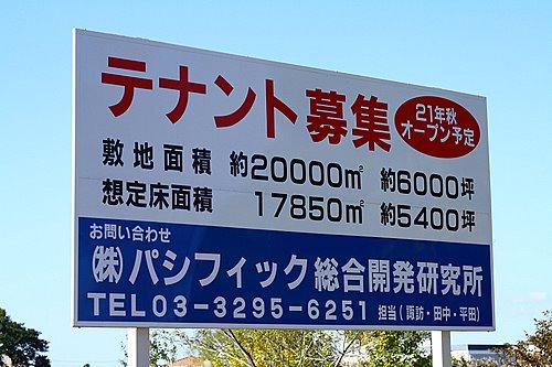 shinkoutyou_0811.jpg
