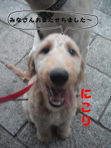 DSCF8144.jpg