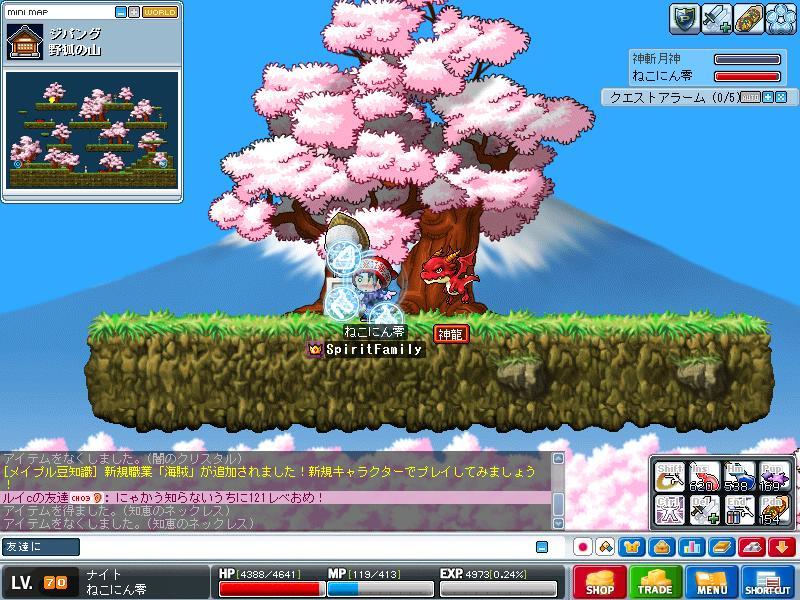 Maple0026.jpg