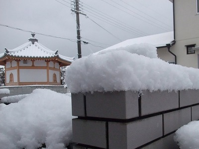 2011-01-25-01.jpg