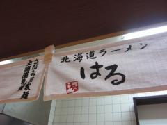 北海道ラーメン はる-7
