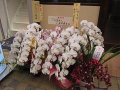 【新店】中華そば いぶき-6