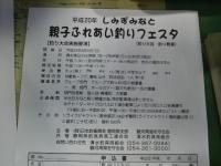 20080729151034
