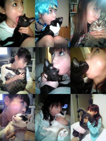 しょこたんのネコに対する愛がわかる1枚