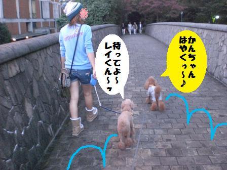 CIMG3448_20081011203106.jpg