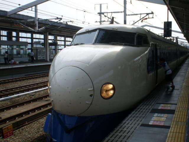 P8040288.jpg