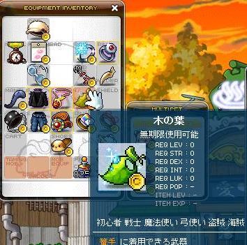 Maple110113_204156.jpg
