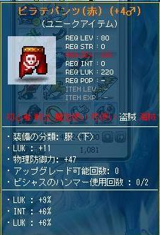 Maple110219_021404.jpg