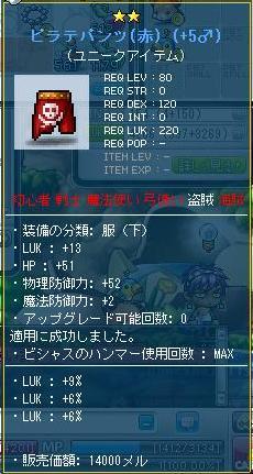 Maple110605_164453.jpg
