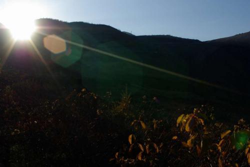 草津の朝山2008秋