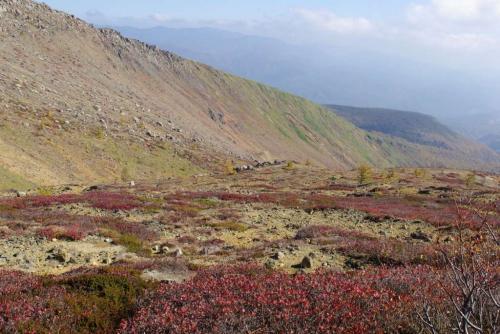 白根山 ちょっと前2008秋