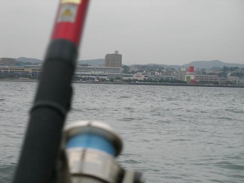 10年ブリの釣り
