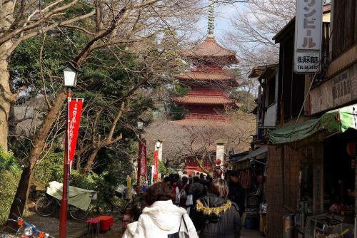 中山参道途中から五重塔