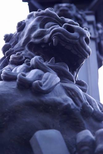3日本橋の番犬一匹