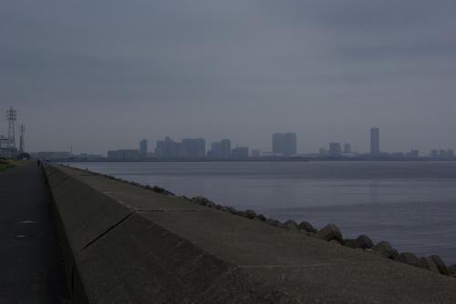 茜浜緑地2009.04.11くもり朝9.00