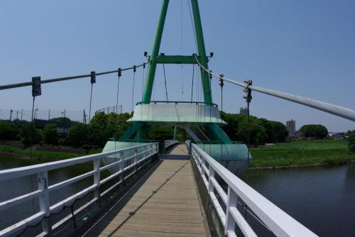 Kサイクリングロードゆらゆら橋のドラえもんとドラ南鎌ヶ谷ちゃん 橋の上