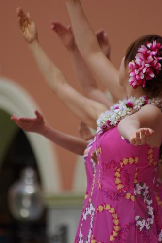 IMGP0727フラダンス