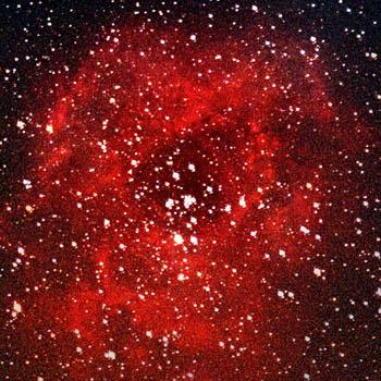 Rosette-Nebula.jpeg