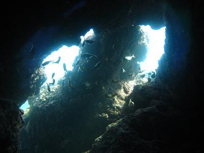 岩くぐり・・・魚が宙に居るみたい!