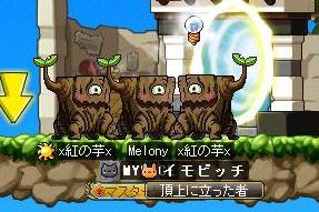 Maple110813_071104.jpg