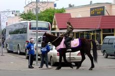 080525ロシアで馬